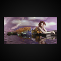 OIL OF EVERY PEARL'S UN-INSIDES NON-STOP REMIX ALBUM